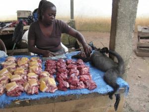 Market worker selling bushmeat